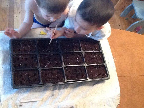 Little gardeners in training