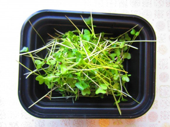 A nice sprout snack...good addition to our salad for lunch