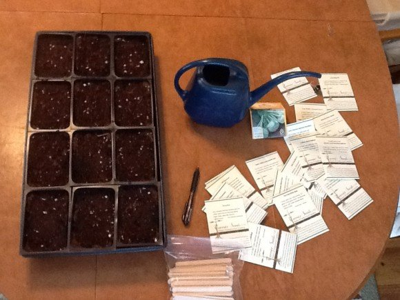 Seed starting supplies, all ready to go