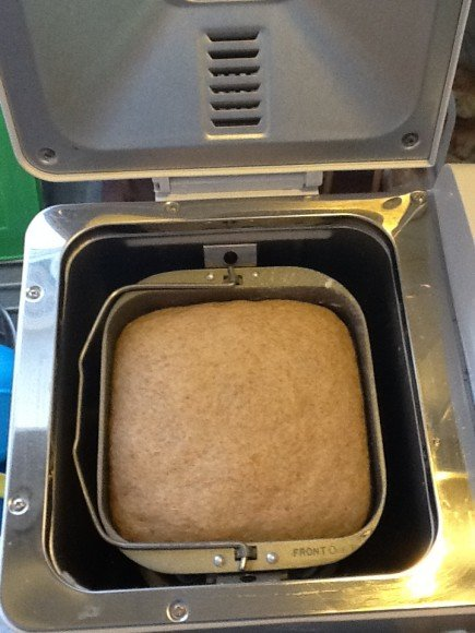 homemade pizza dough in bread maker