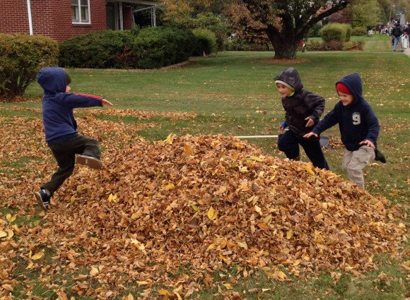 boys jumping into their huge leaf pile
