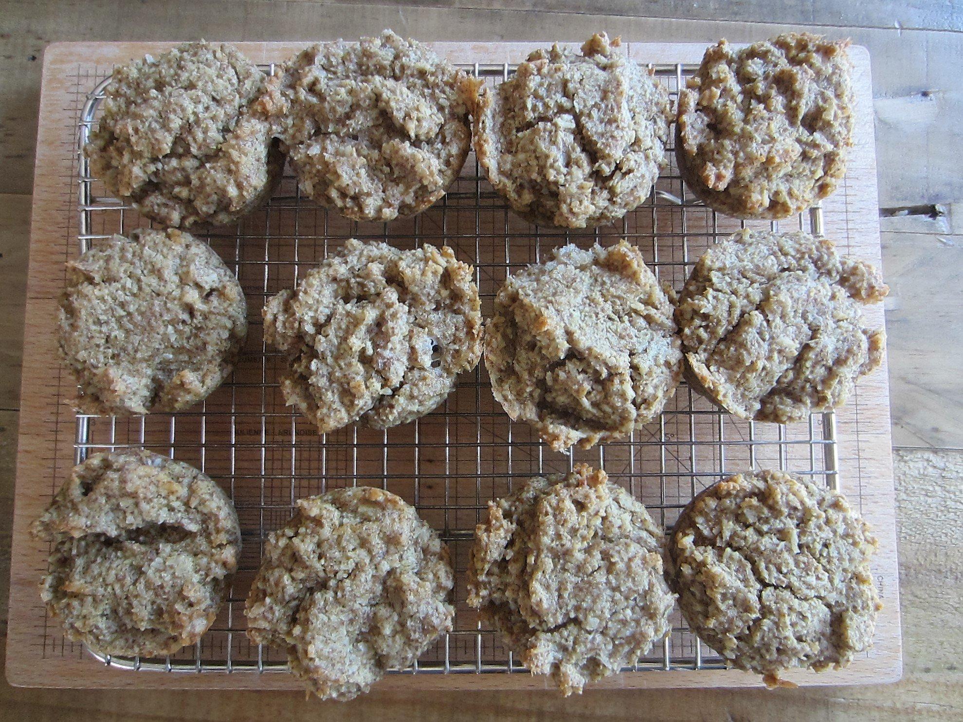 Coconut Milk Biscuits