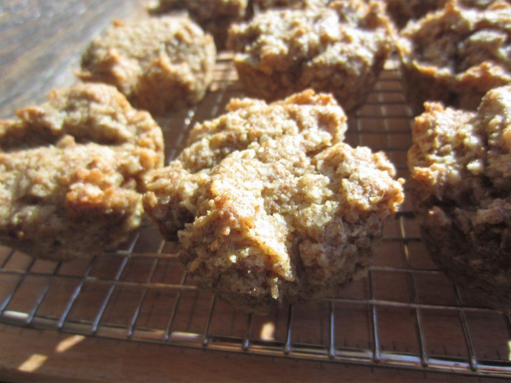 homemade Coconut Milk Biscuits