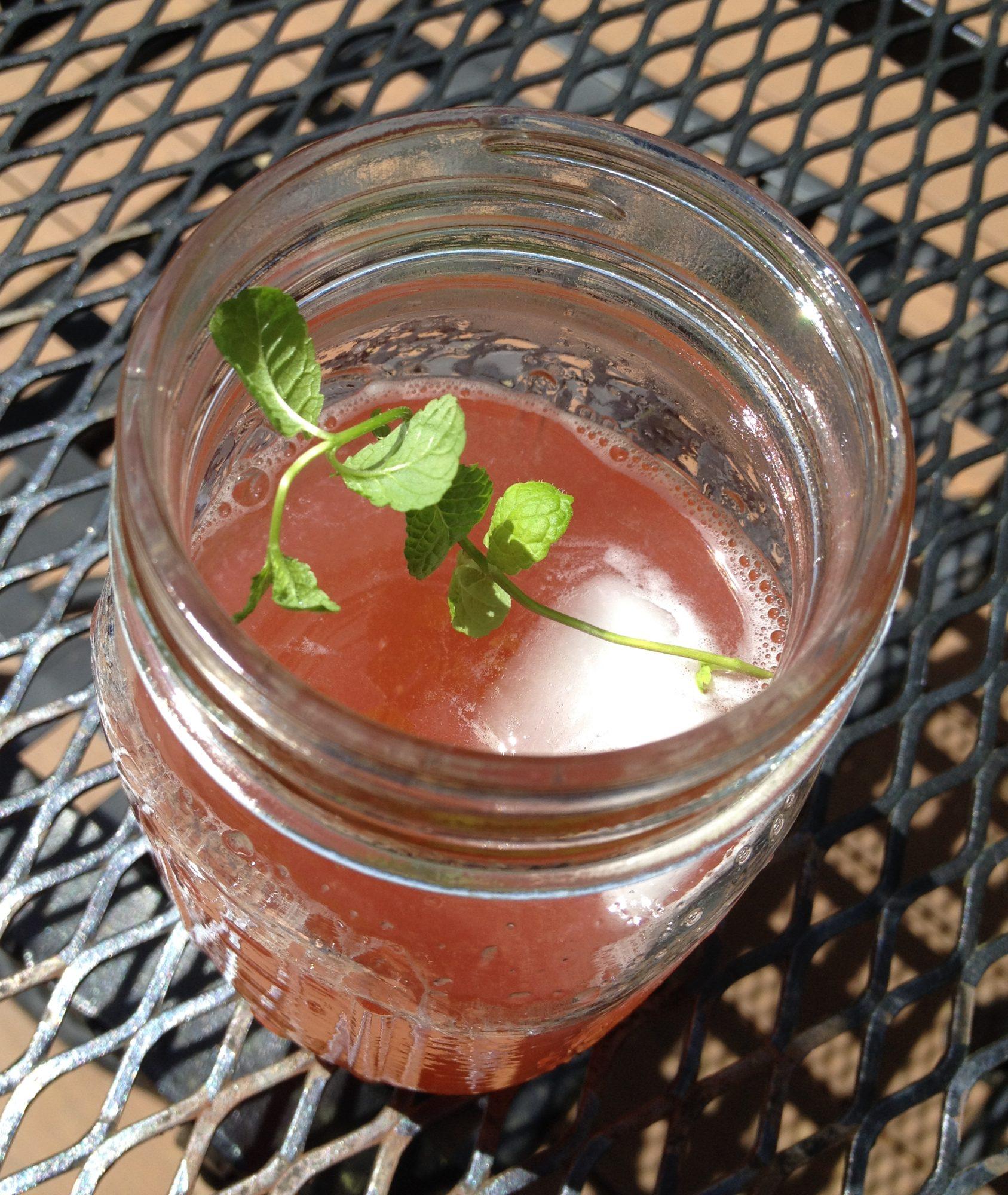 Rhubarb Mint Iced Tea