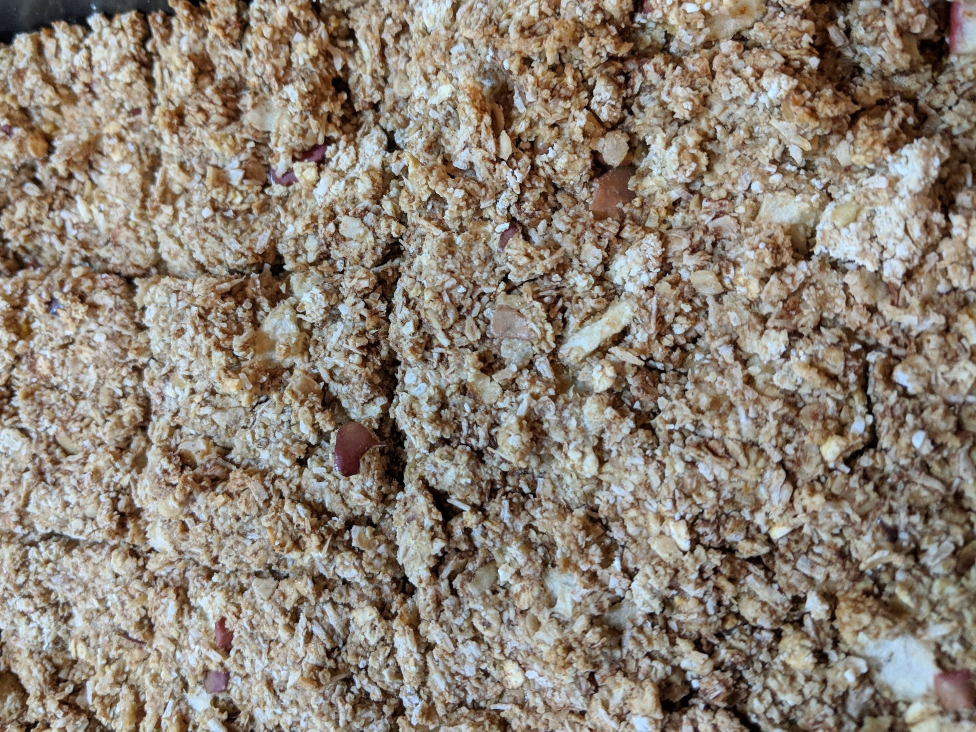 Apple and Oat Breakfast Bar