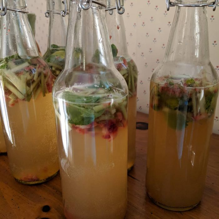 Strawberry-Rhubarb-Mint Kombucha